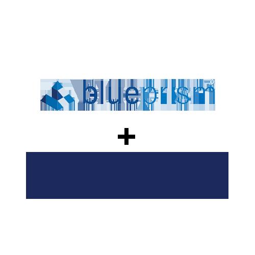 BluePrism and Blueprint