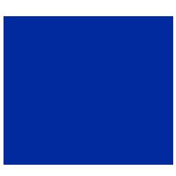 Automotive Customer Icon